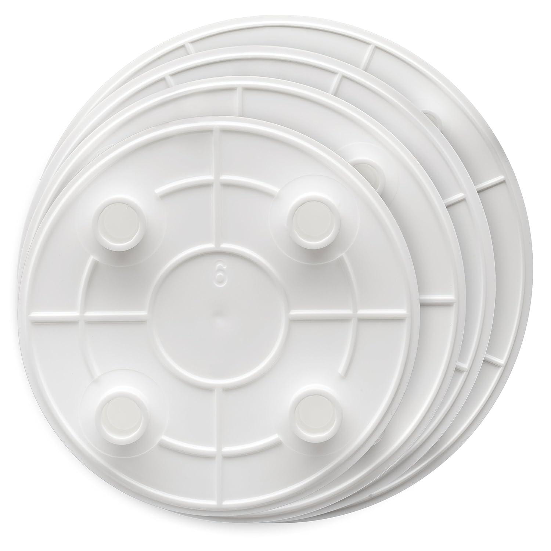 Amazon.com | Lady Mary/Ateco Separator Plates Set of 4 Lady Mary Cake Plates Plates  sc 1 st  Amazon.com & Amazon.com | Lady Mary/Ateco Separator Plates Set of 4: Lady Mary ...