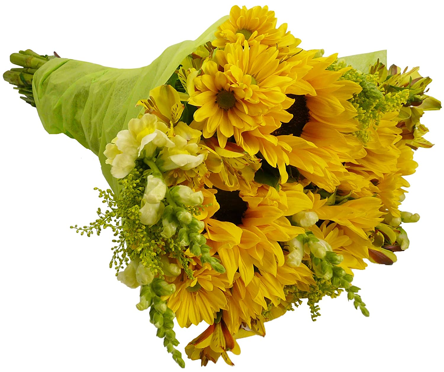 Amazon benchmark bouquets rays of sunshine with vase amazon benchmark bouquets rays of sunshine with vase fresh cut format mixed flower arrangements grocery gourmet food dhlflorist Gallery