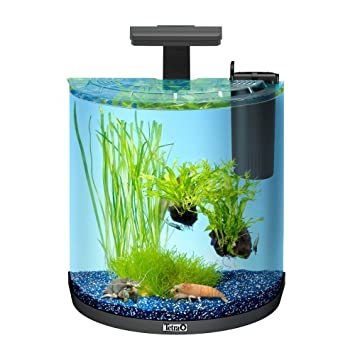 Tetra AquaArt Aquarium Explorer Line,: Amazon.es: Productos para mascotas