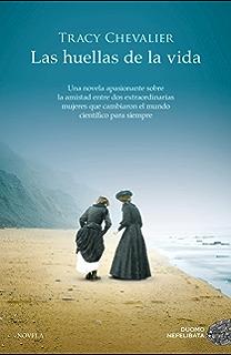 El faro del silencio (Los crímenes del faro nº 1) eBook: Martín ...