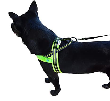 Pet Lovers Stuff Dog Harness Large Breed - No Pull, Adjustable, Highly  Reflective, Led, Over The Head
