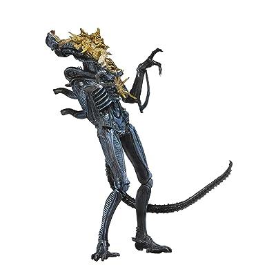"NECA - Aliens 7"" scale action figure - Series 12 Xenomorph Warrior Blue (Battle Damaged): Toys & Games"