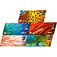 Beautex Ichiryu 4 PLY Box Tissue, 100ct (Pack of 5) (1 New Version pack of 5)