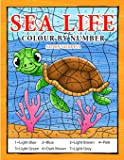 Sea Life Colour By Number: Coloring Book for Kids Ages 4-8