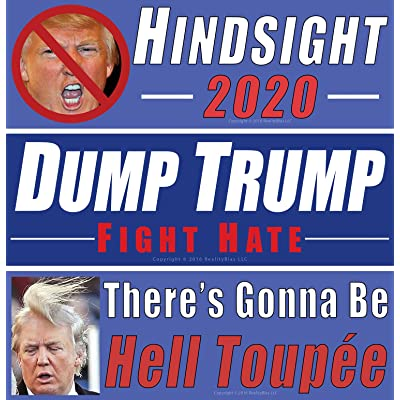 Anti Donald Trump Bumper Sticker Variety Protest Pack. Our 3 Best Decals For 1 Low Price to Show How Much You Loathe the President & His Billionaire Cabinet. Now Its Your Turn to Tell It Like It Is!: Automotive