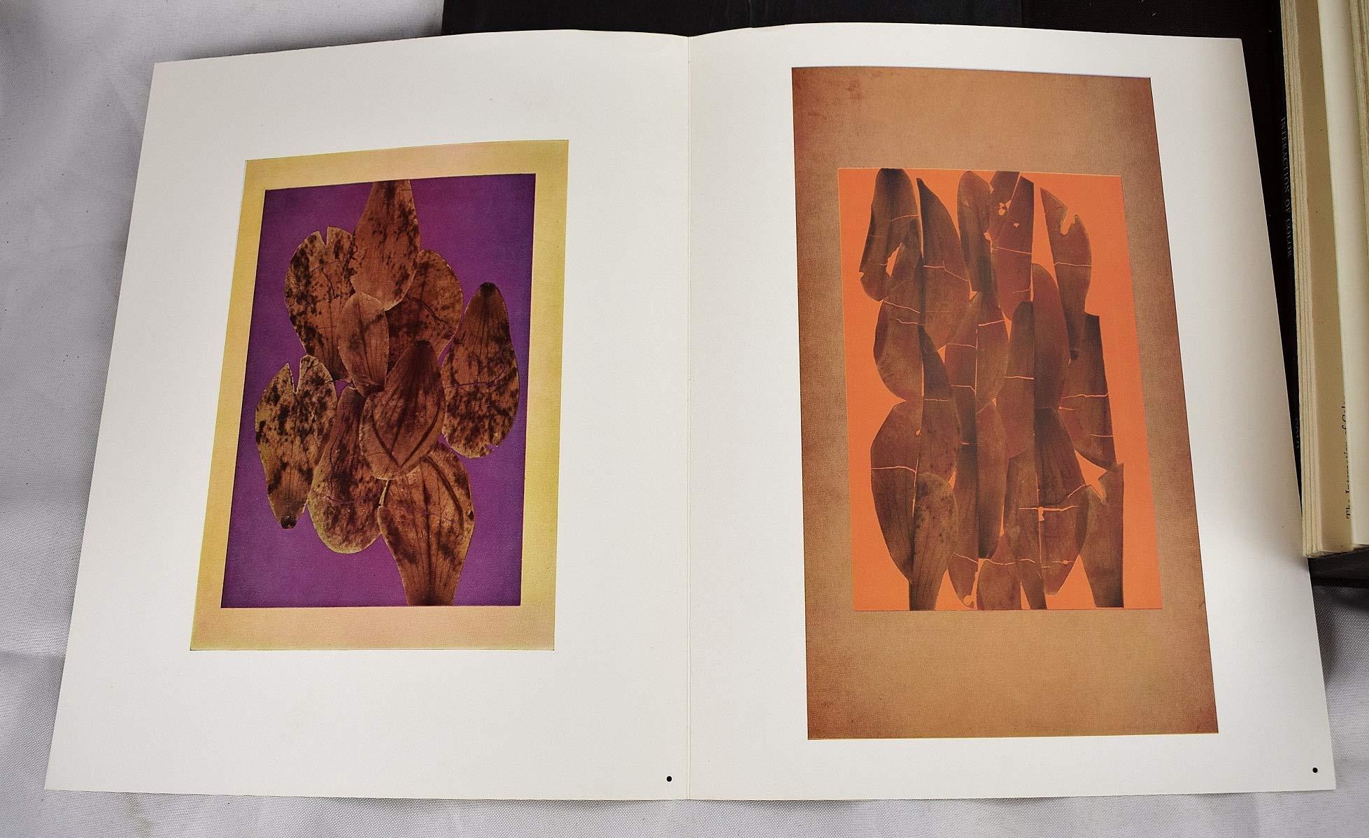 Interaction Of Color Josef Albers Amazon Com Books