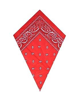 2cc03ab7c0fc Bandana à motif cachemire Rouge  Amazon.fr  Informatique