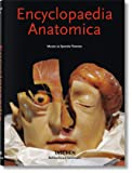 ko-25 Encyclopedia Anatomica HC