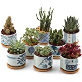 T4U 3 Inch Ceramic Succulent Planter Pots with Bamboo Tray Set of 8, Japanese Style Porcelain Handicraft as Gift for Mom…