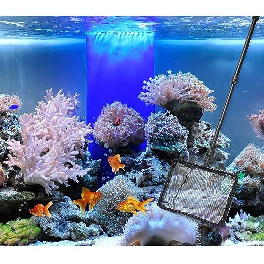 UEETEK - Juego de herramientas de limpieza para acuario, 6 en 1, kit completo de limpiador ajustable, cuchilla de acero inoxidable, rascador de algas, ...