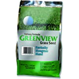 GreenView Fairway Formula Grass Seed-Kentucky Bluegrass Blend,3 lb Bag
