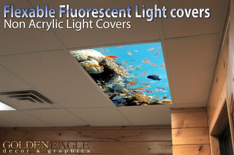 Fluorescent Light Covers Ocean 002