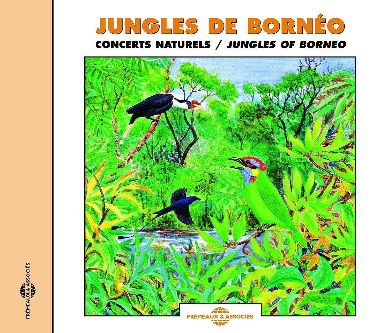 Sounds 40% OFF Cheap Sale of online shop Nature: Borneo Jungles