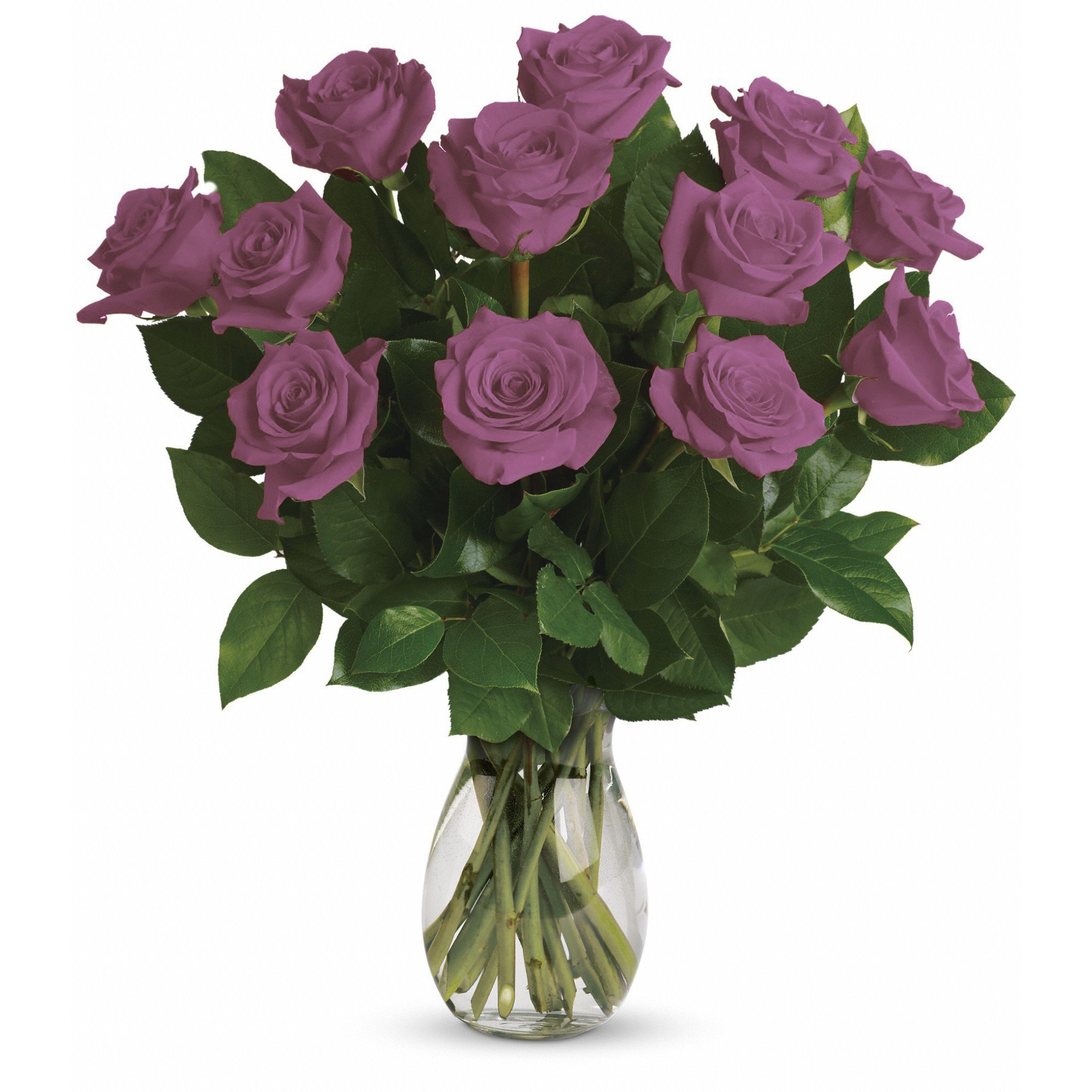 Farm Direct Rose Bouquet of 12 Fresh Cut Roses with Vase (Lavender)