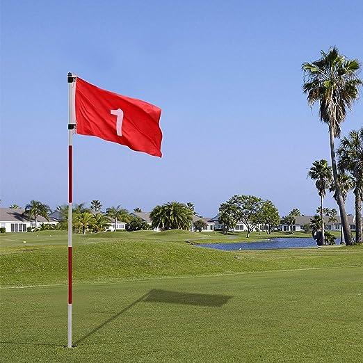 Amazon.com: AHHC - Juego de copas de golf con diseño de ...