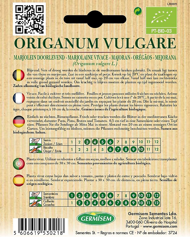 Germisem Biologico Origanum Vulgare Semi di Bietola 0.5 g