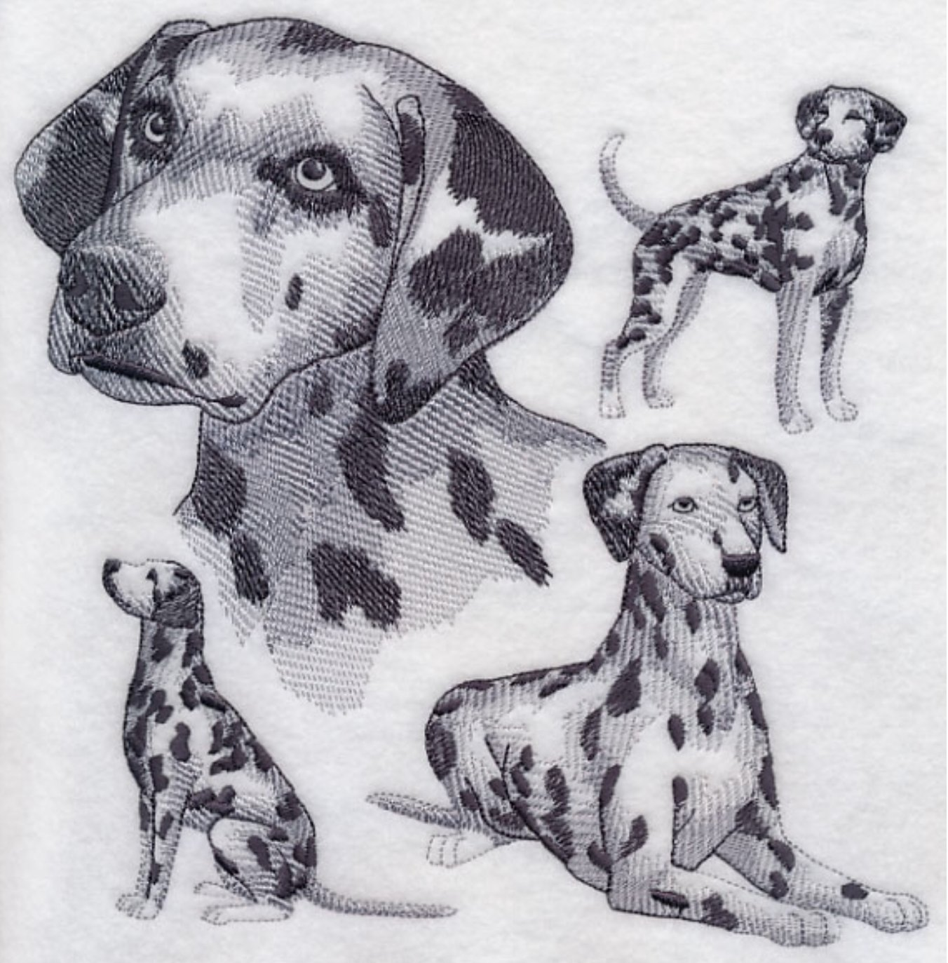 Dalmation Custom Embroidered Sweatshirt Shirt