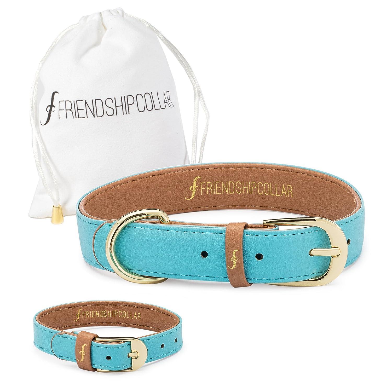 Azure XX-Small Azure XX-Small FriendshipCollar Dog Collar and Friendship Bracelet Azure XX Small