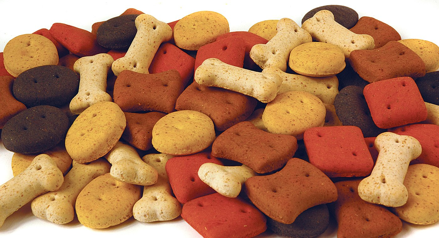 Pointer mixte Biscuit Treats 10 kg