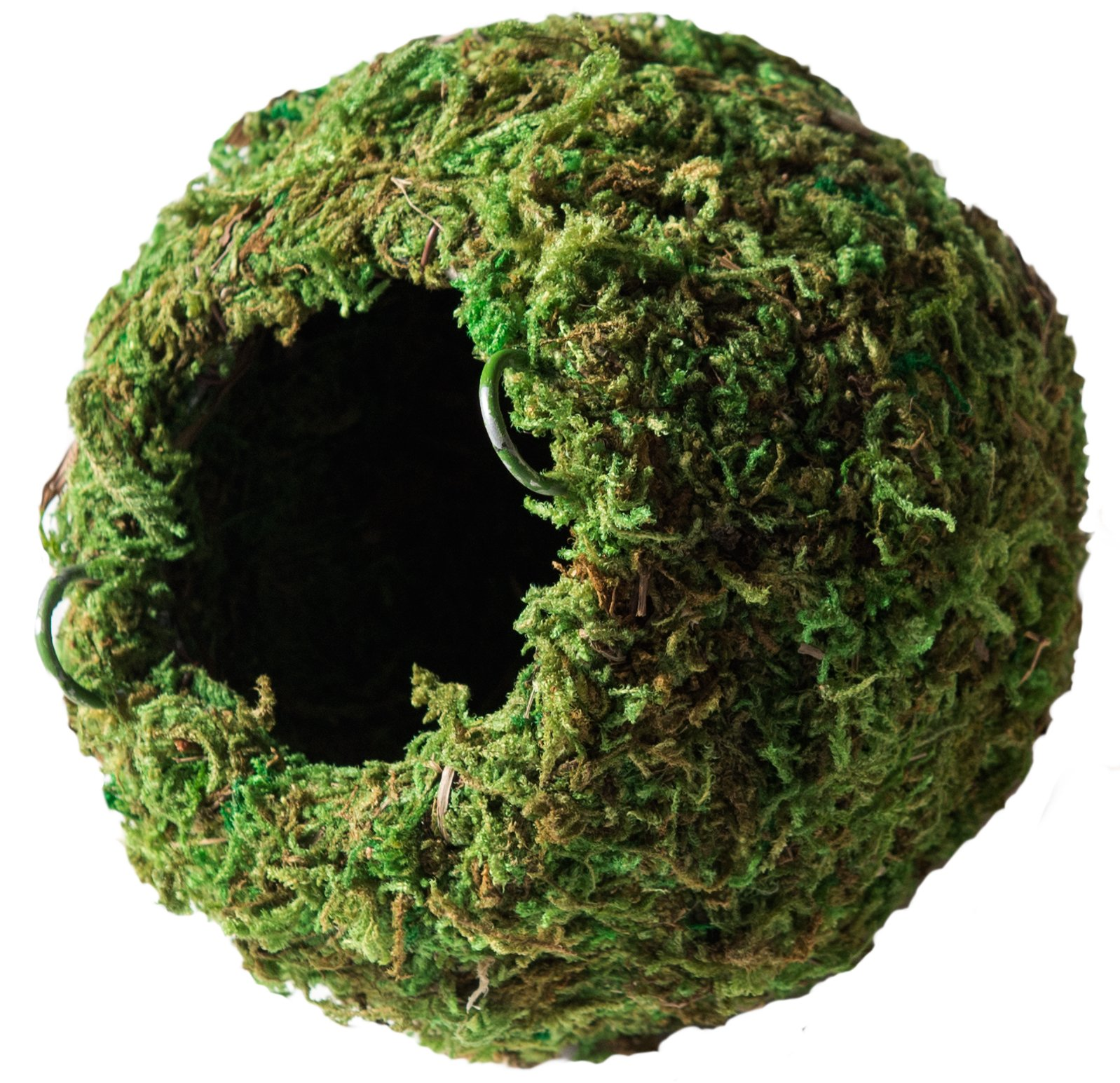 Galapagos 05346 Mossy Cave Hide, 4'', Green