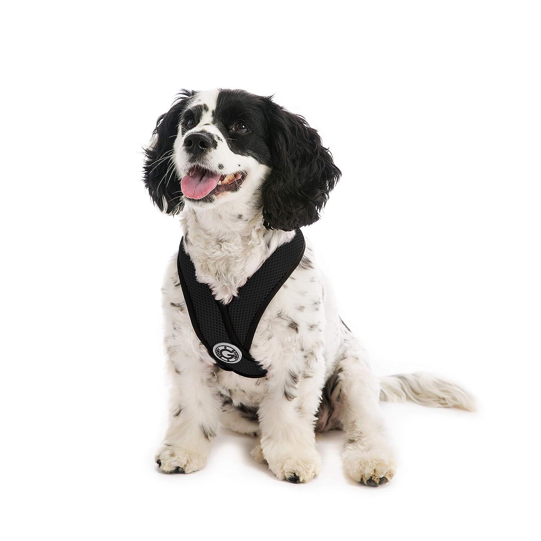 Black XLGooby Gooby Choke Free Comfort Soft Dog Harness, Black, XLarge