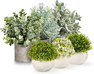Kitzini Mini Artificial Plants Faux Plant Set – 6 Artificial Plants in Pots for Home Decor Indoor Desk Plant