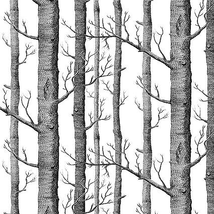 Akea Modern Birch Tree Wallpaper Roll Black And White Forest Trunk
