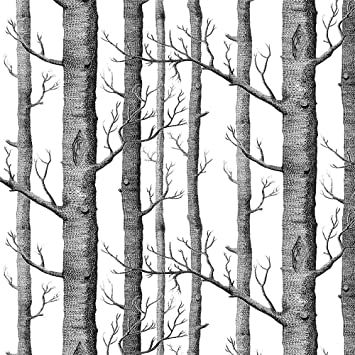 Akea Modern Birch Tree Wallpaper Roll Black And White Forest Trunk