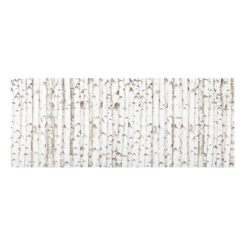 Bilderwelten Glass Splashback - No.YK15 Birch Wall - Panoramic, Backsplash Cooker Splashback Protector Panel Decorative Splashback Panel, Dimension HxW: 40cm x 100cm PPS. Imaging GmbH