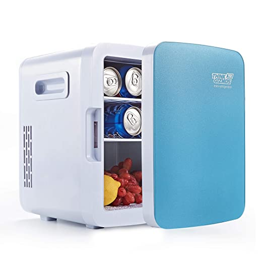 Mini Fridge Electric Cooler Warmer Ac Dc Portable Thermoelectric System 10l