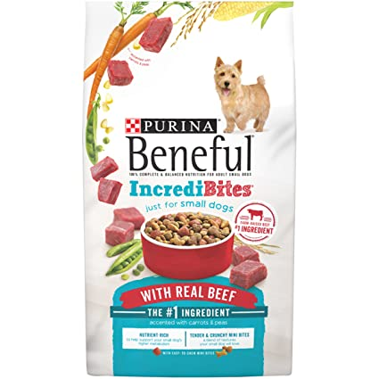 Amazoncom Purina Beneful Incredibites With Real Beef Adult Dry Dog