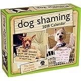 Dog Shaming - 2018 Daily Desk Calendar
