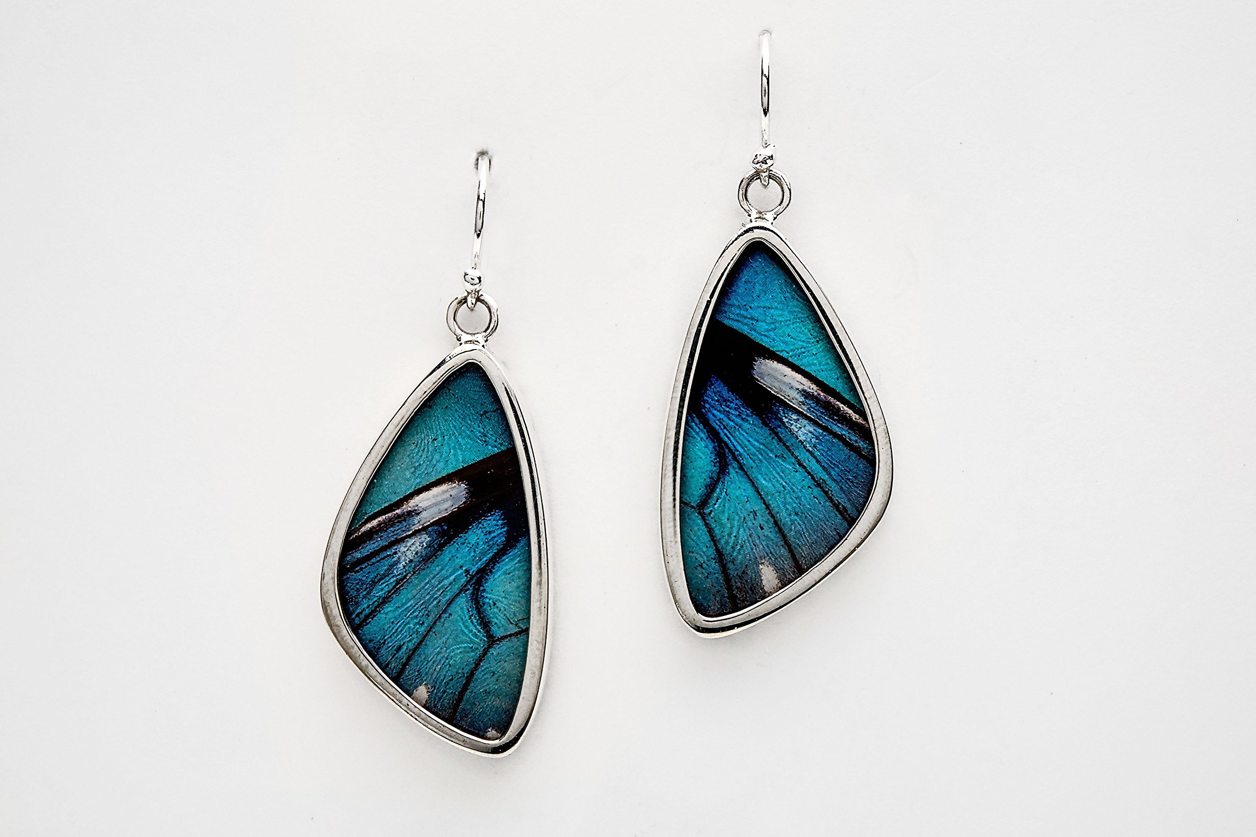 Real Butterfly Wing Earrings in Sterling Silver - Style #5