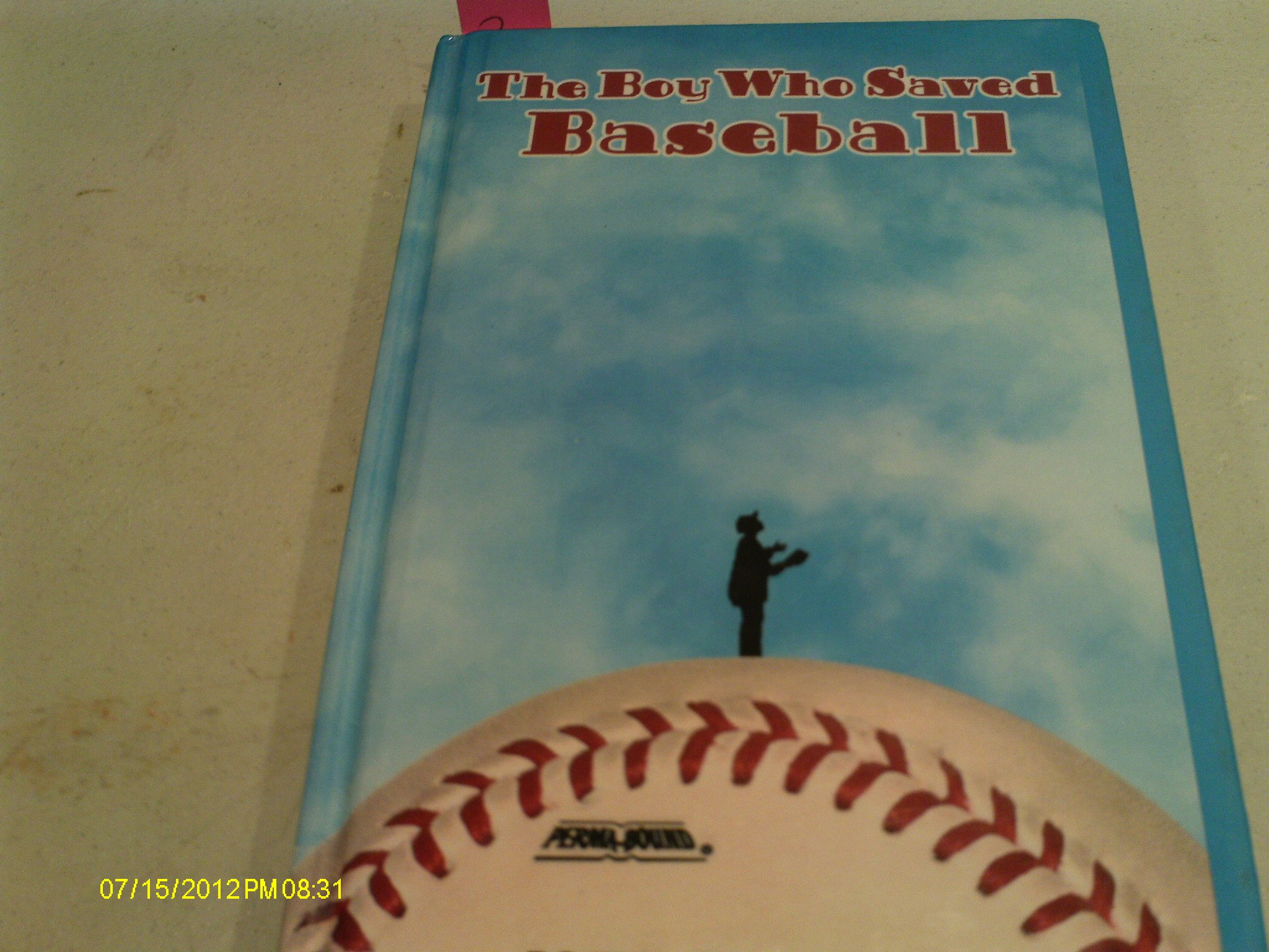 Read Online The Boy Who Saved Baseball pdf