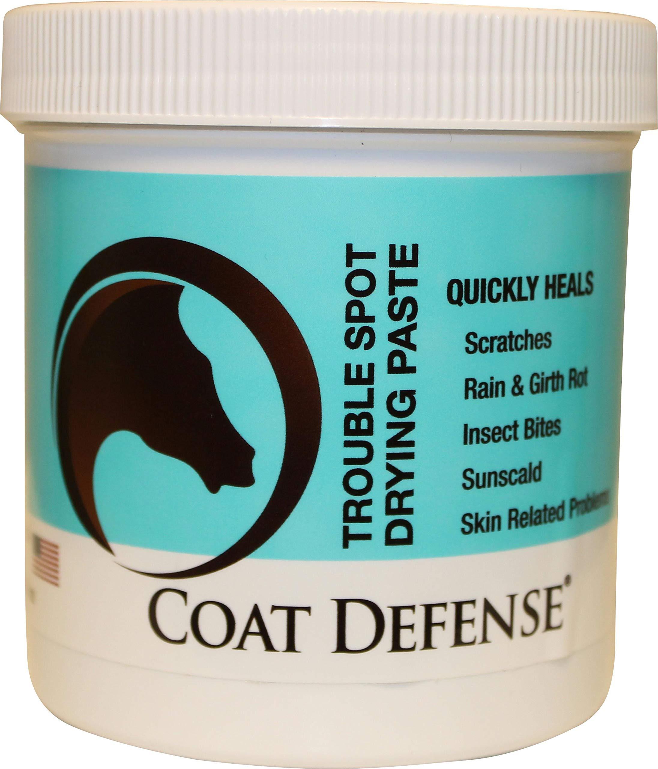 Coat Defense 793597086501 Trouble Spot Drying Paste, 24 oz by COAT DEFENSE