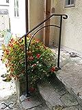 Iron X Handrail Arch #2