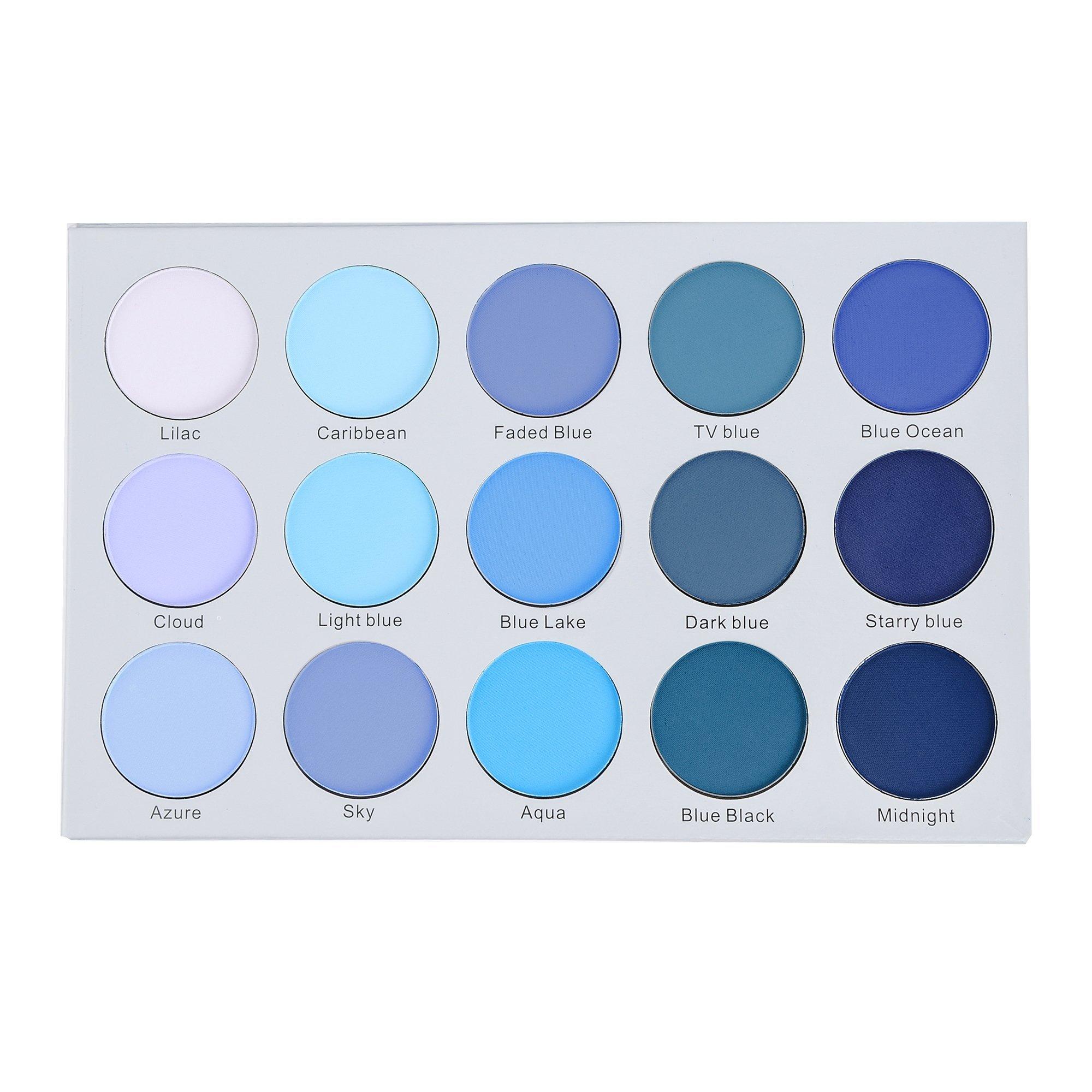 38919df5dde Amazon.com: Kara Beauty ES22 15 COLOR SMOKY BLUE EYESHADOW: Beauty