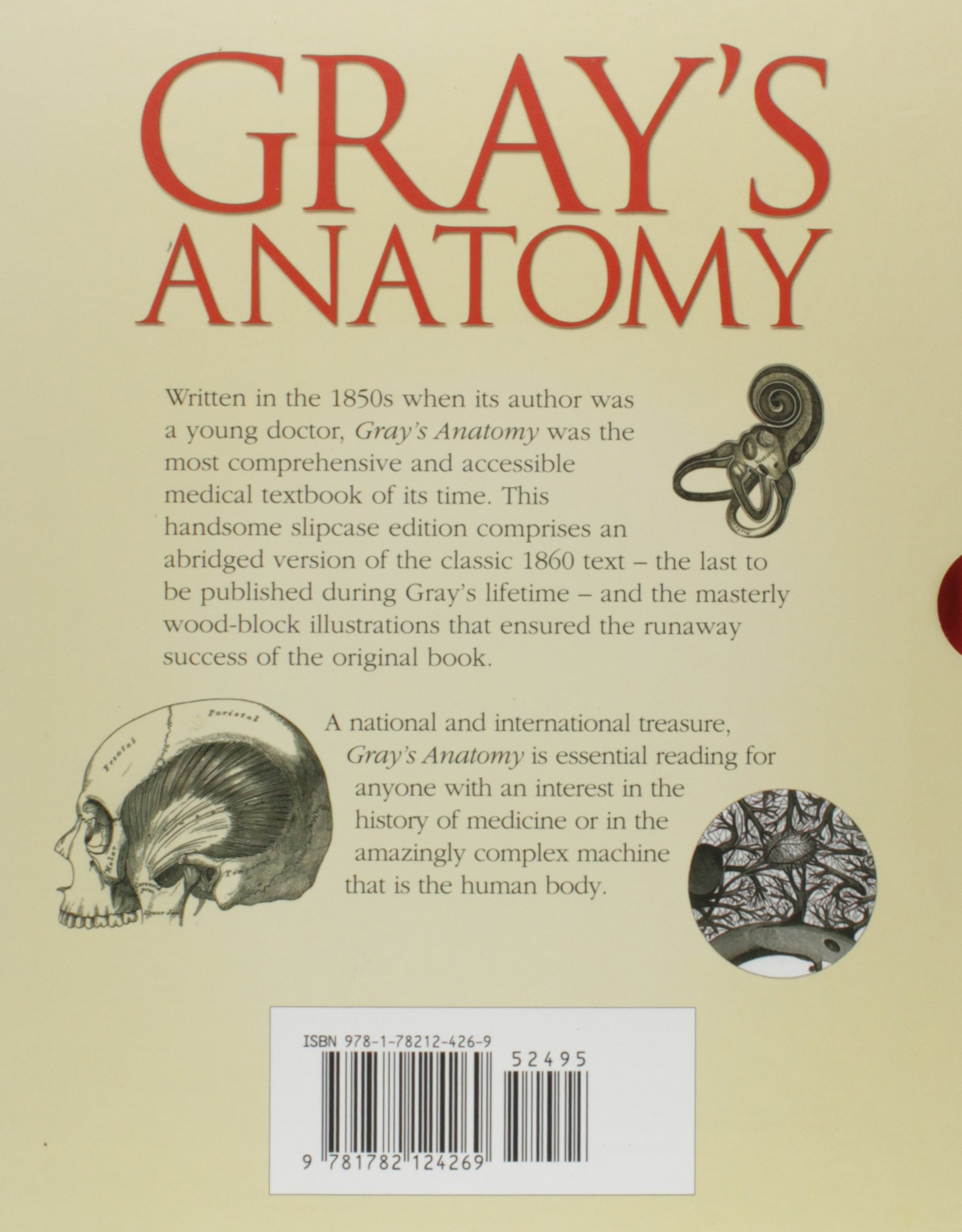 Buy Grays Anatomy Book Online At Low Prices In India Grays