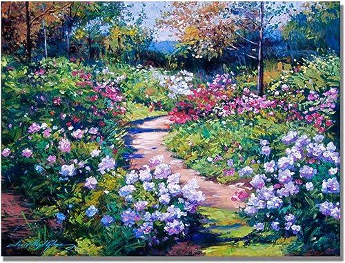 Natures Garden by David Lloyd Glover, 35×47-Inch Canvas Wall Art