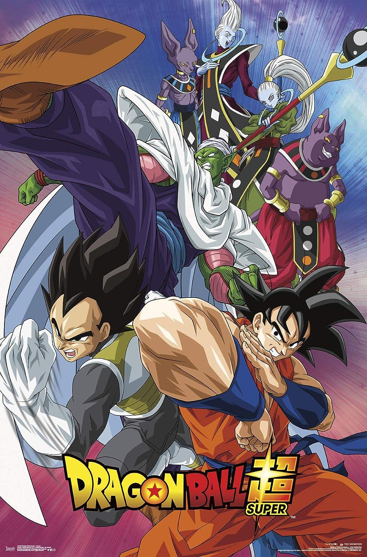 Trends International Dragon Ball: Super - Group Wall Poster, 22 375