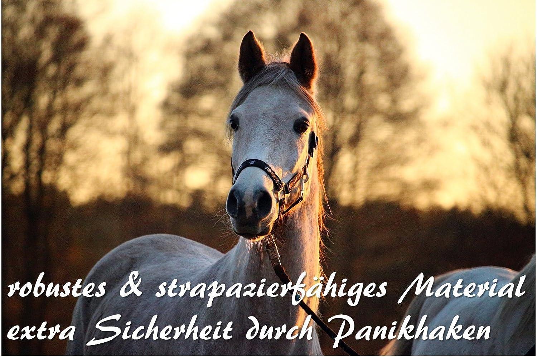 ch/èvre Longe avec mousqueton de panique pour cheval/ /âne Corde pour poney