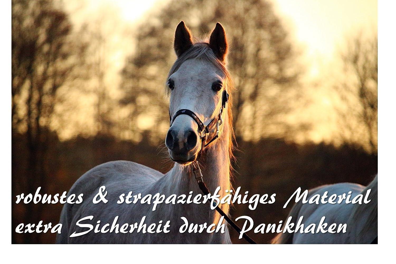 cabra burro Cuerda de plomo con gancho de p/ánico para caballo correa trenzada en distintos dise/ños elegantes para poni