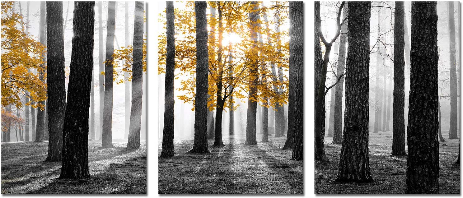 Kalormore 3 Pieces Black and White Fall Sunrise Forest Canvas Wall Art Decor Yellow Tree Autumn Nature Picture Contemporary Artwork for Modern Living Room Bedroom Office Decoration