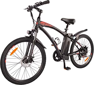 DJ Mountain Bike 750W Power Electric Bicycle