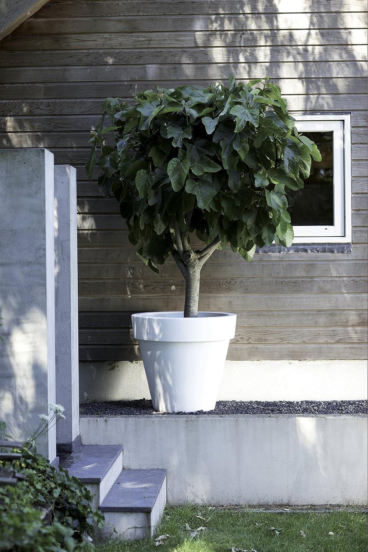 Antracite 77.8 x 77.8 x 70.5 cm elho Pure Round Vaso