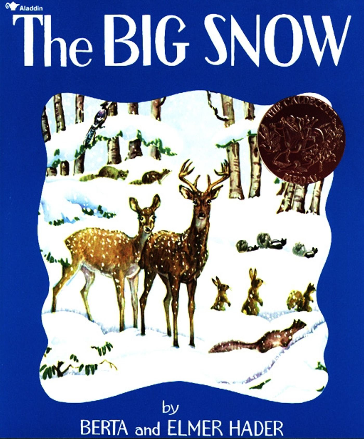 Image result for big snow book