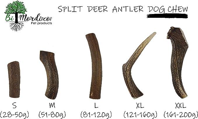 S 51-75g Bio Mordiscos Deer antler dog chew 100/% natural