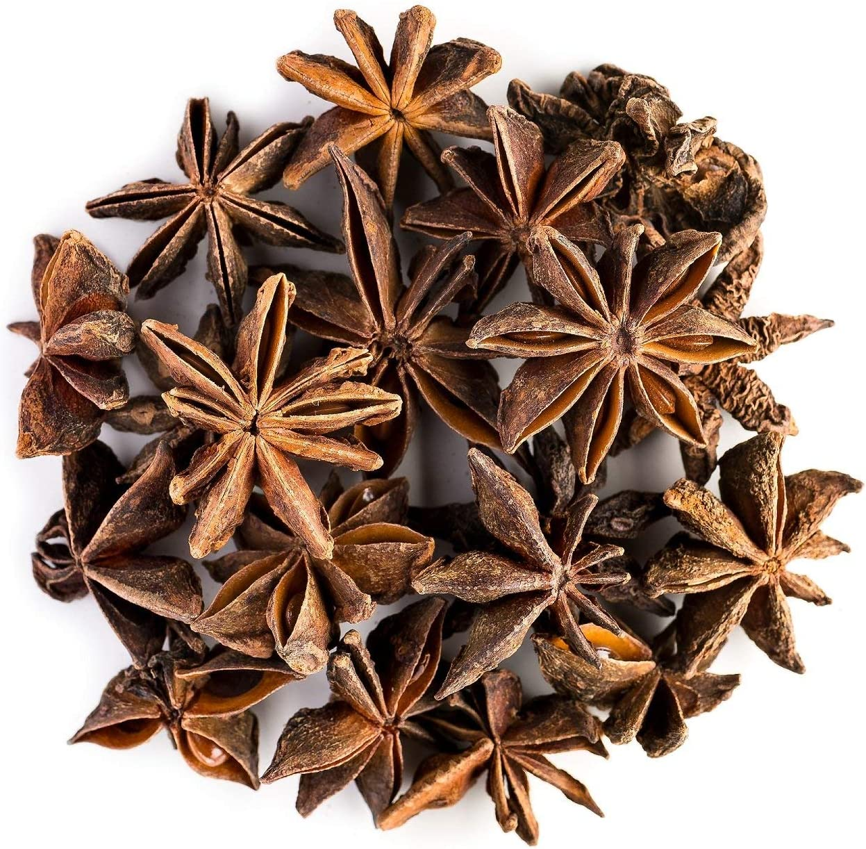 5 Star Anise Herb Seeds Badian Illicium Verum Heirloom Spices Edible Home Plants
