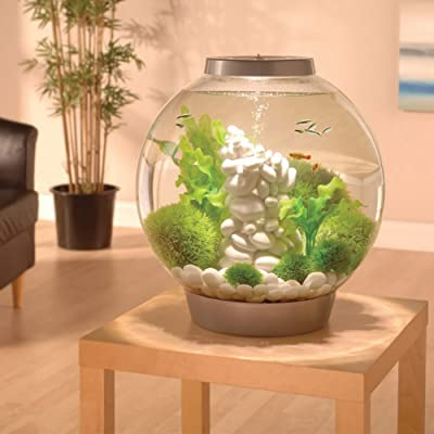 BiOrb classic aquarium review