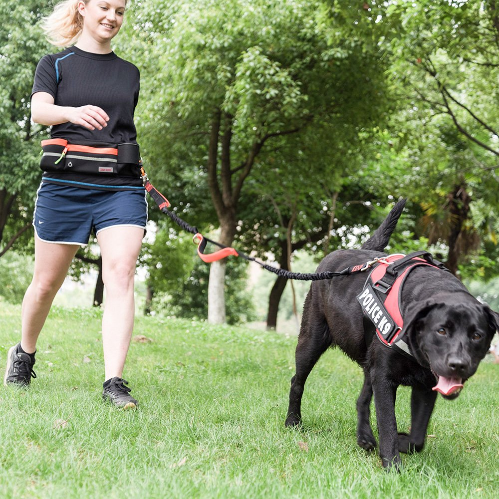 Hands Free Dog Leash, Dog Walking Training Belt Shock Absorbing Bungee Leash up to 180lbs Large Dogs, Phone Pocket Water Bottle Holder, Fits All Waist Sizes from 28 to 48,Orange Marksign